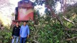 Two young boys averted a major rail accident | Ran for 500 mtrs to signal train pilot to stop train.