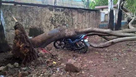 Blustering rain wrecks havoc in Belagavi city